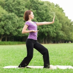 Tai Chi Class and Energy Healing Workshop